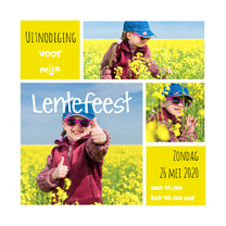 Lentefeest collage geel OT