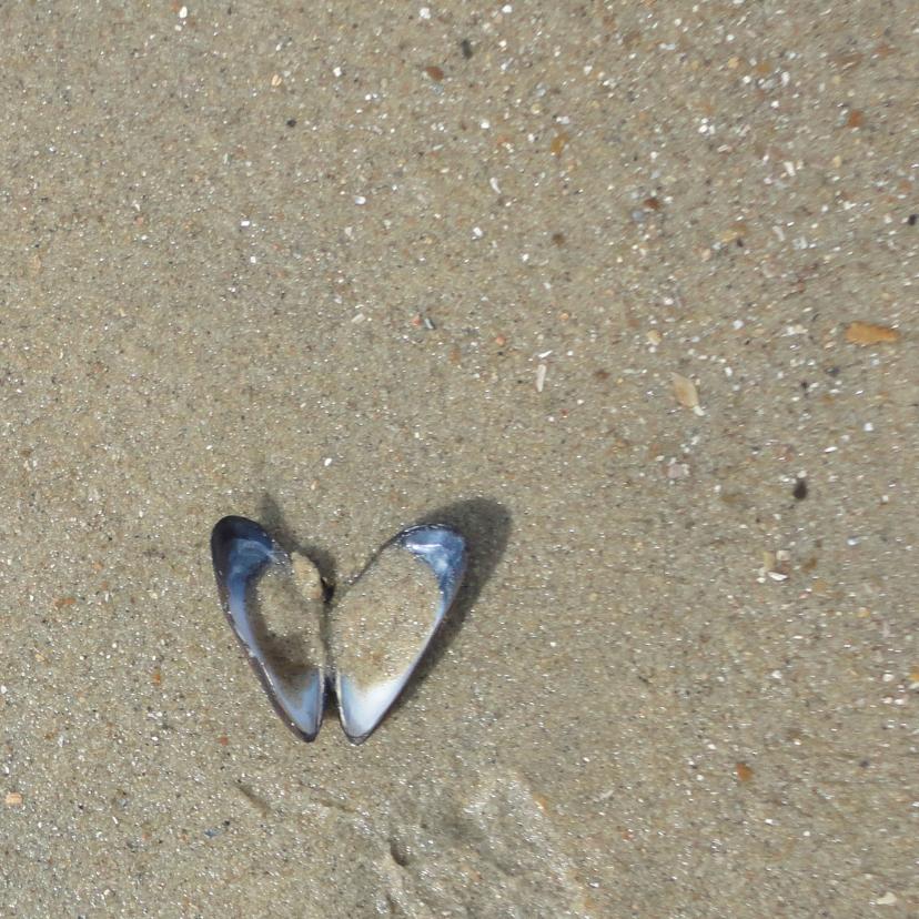 Liefde kaart Zeeuws meisje hart 3