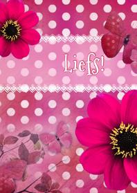 Vriendschap kaarten - Liefs pink