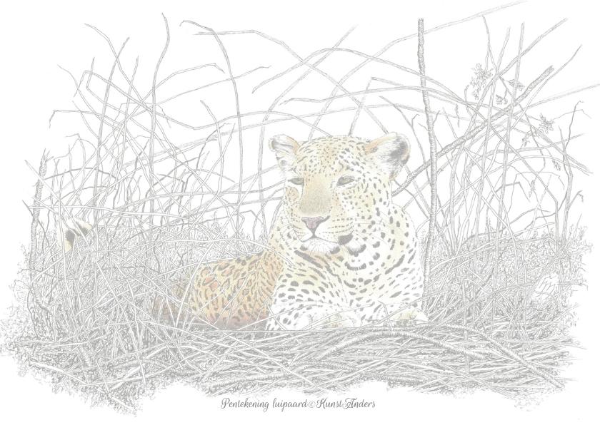 Luipaard 2