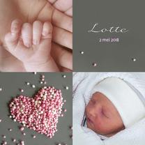 Geboortekaartjes - Meisje Muizenhart fotokaart