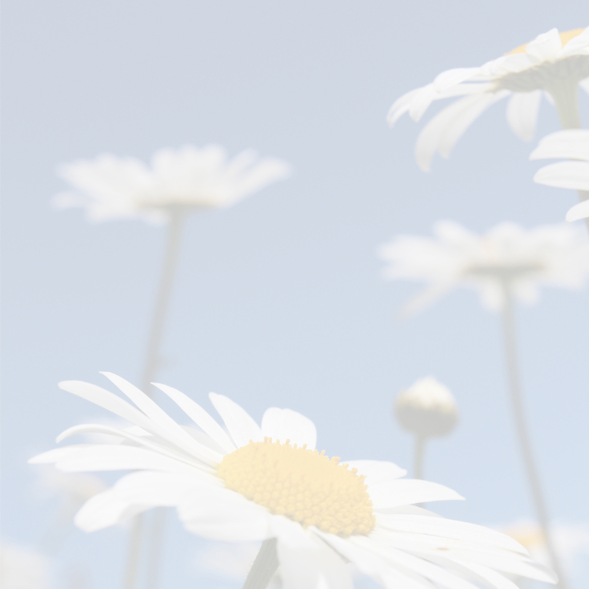 Moederdagkaart bloemen 3