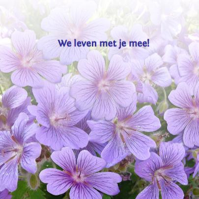 Mooie beterschapskaart bloemen, hart met kaartje purper 3