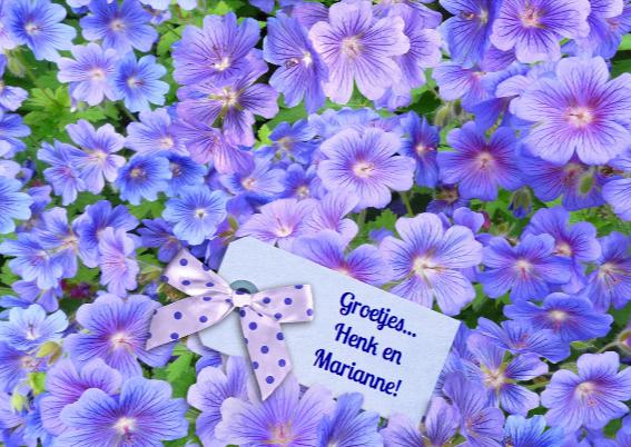 Mooie bloemen in tekst GEFELICITEERD! 3