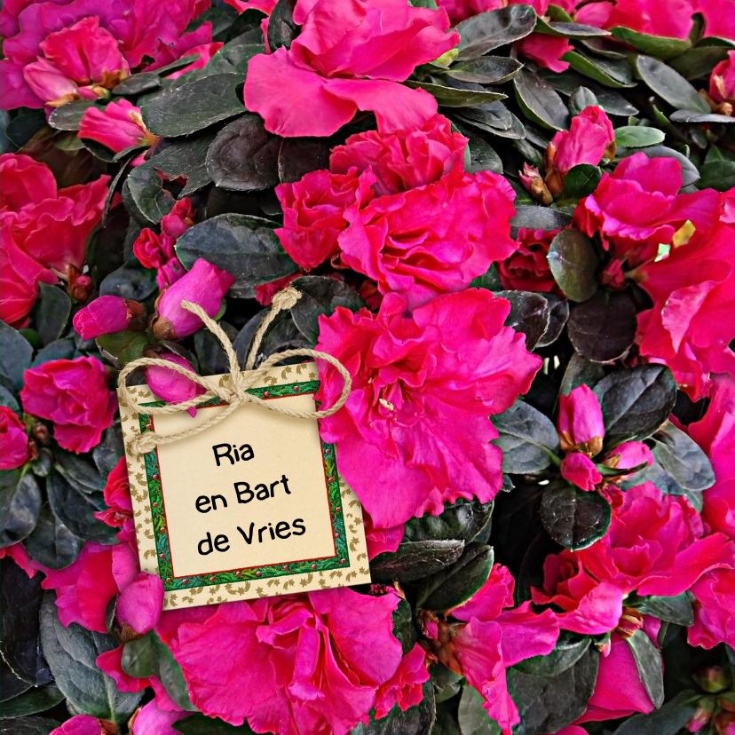 Mooie bloemenkaart Azalea Mollis en labeltje met tekst 3