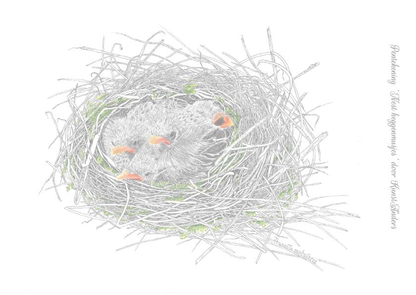 Nest heggenmusjes 2