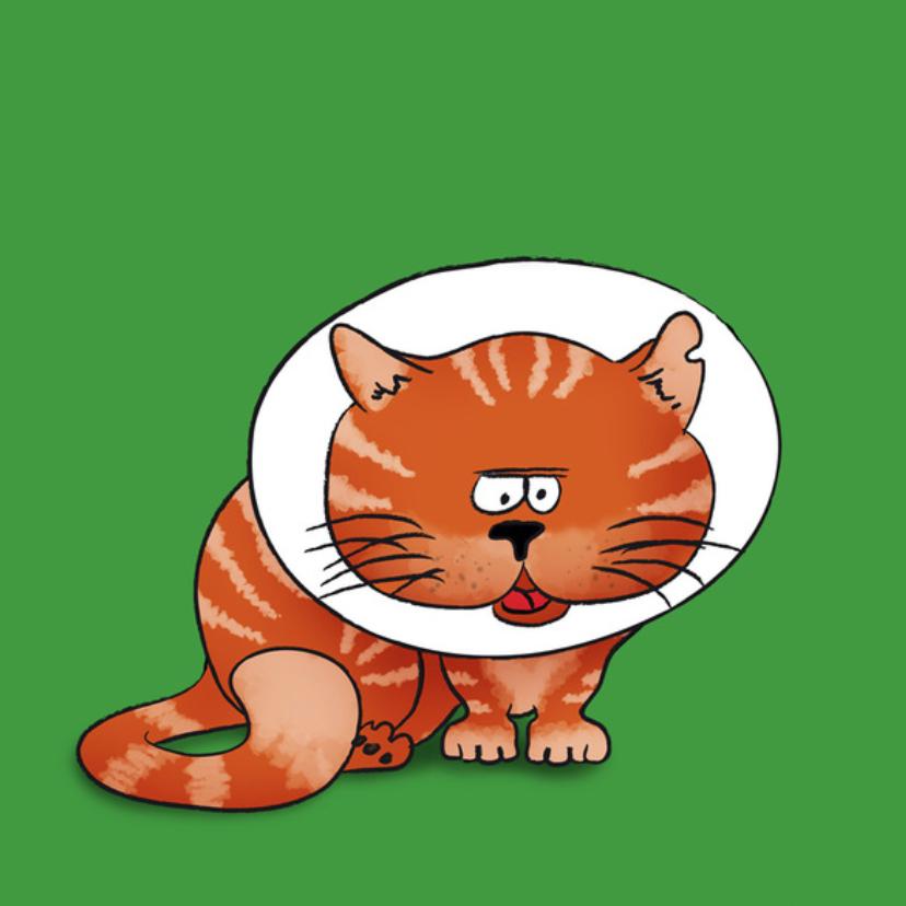 Net geopereerd - kat 2
