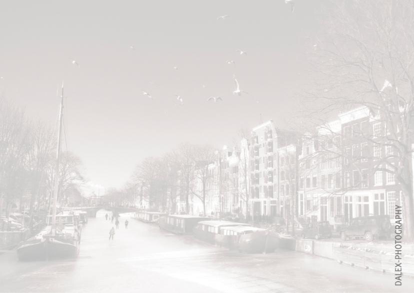 Nieuwjaarskaart-Amsterdam winter 2