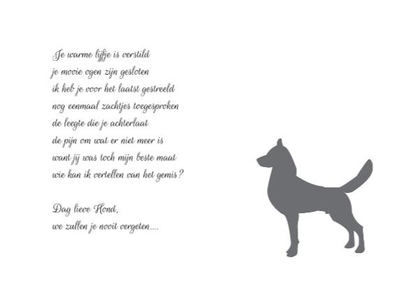 nr27-afscheid-hond 3