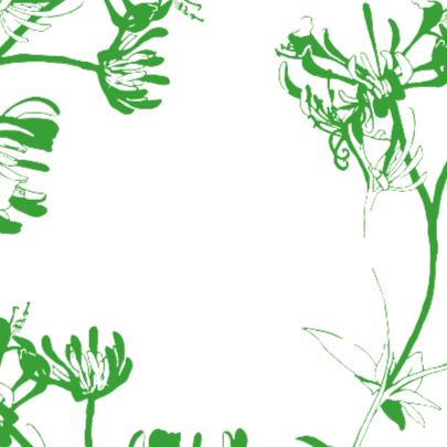 Opbeurende Kaart Met Bloemen 2