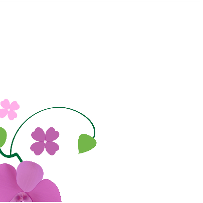 Orchidee kaart  Optioneel met eigen foto 2