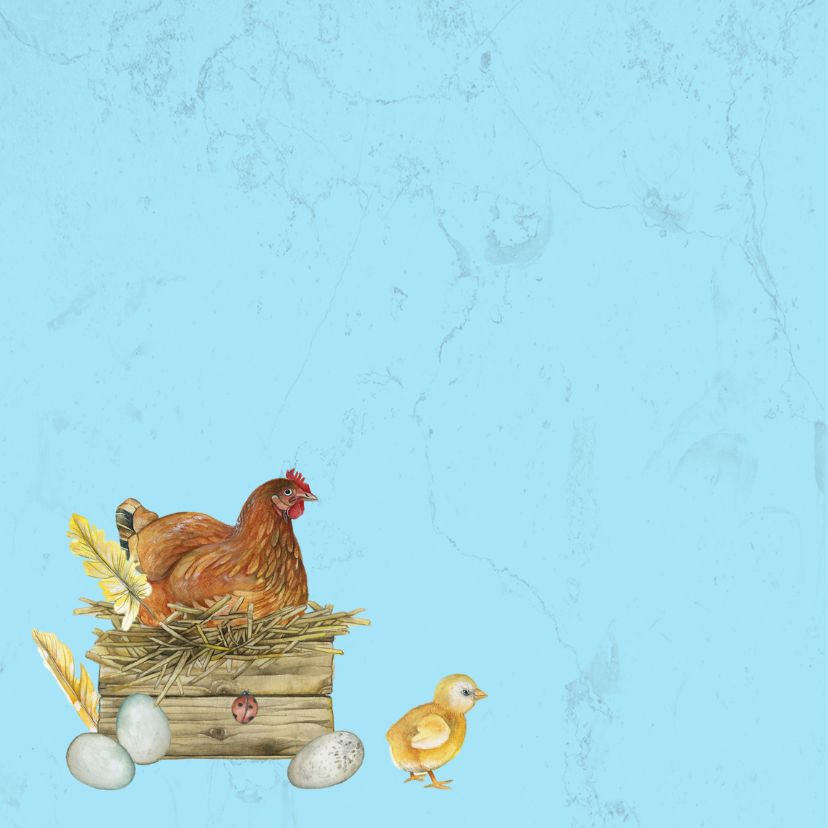 Pasen kip en kuikens 2