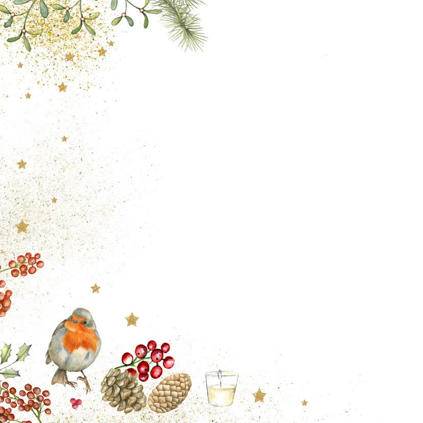 Prettige Kerstdagen vogelhuisje roodborstjes 2