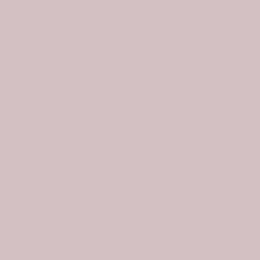 Ranonkels vier kleuren 3
