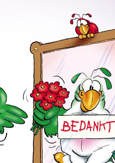 rocco bedankt  papegaai met spiegel 3
