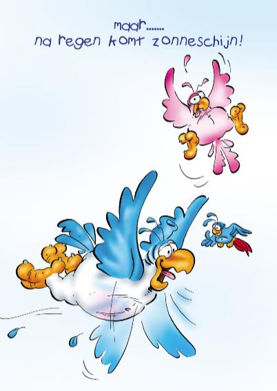 rocco beterschap 3 papegaai paraplu 3
