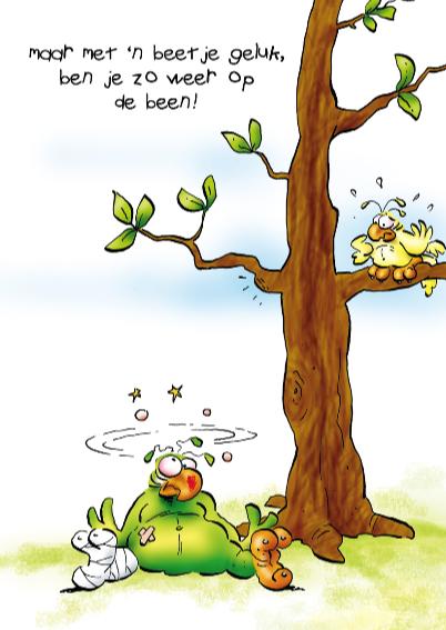 Rocco beterschap papegaai tegen boom 3