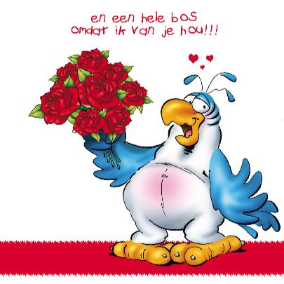rocco valentijn 4 papegaai grote roos 3