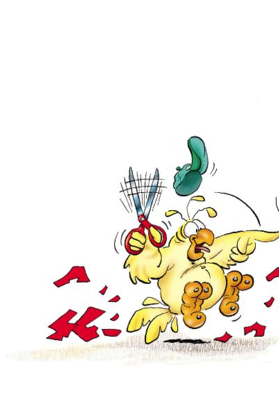 rocco verjaardag 5 papegaai happy 2