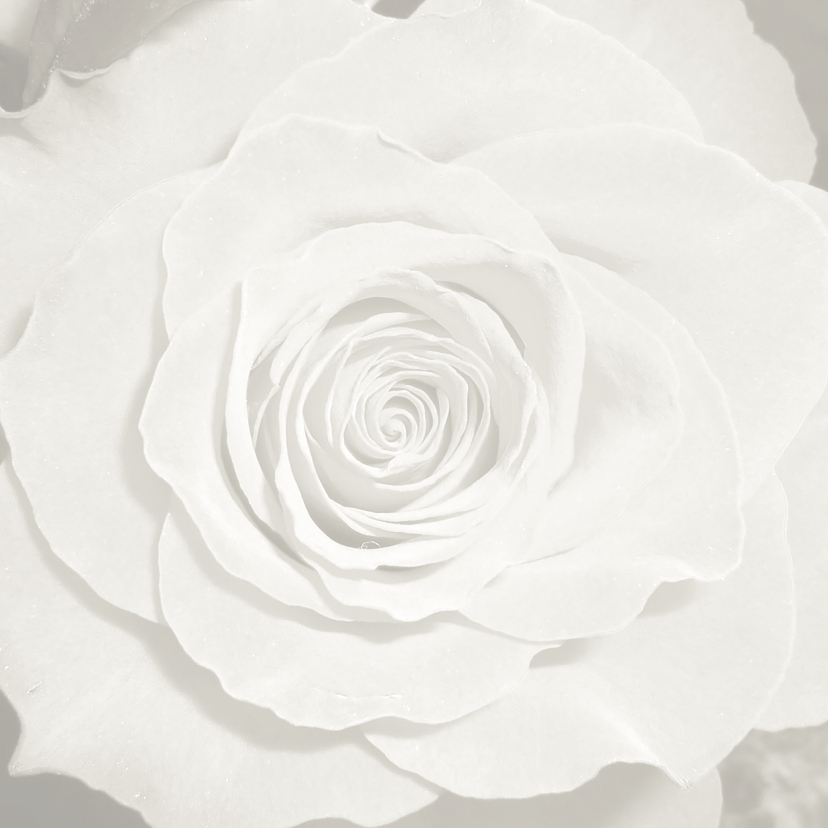 Roos uit het hart 2