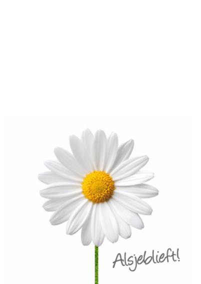 Schattig meisje met bloem 2