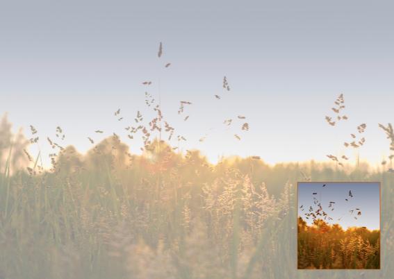 sfeervolle ondergaande zon  3