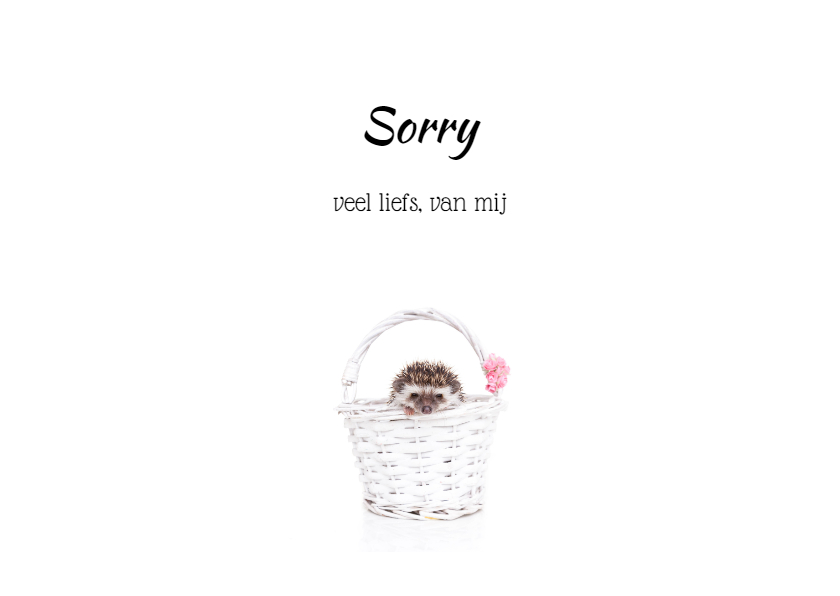 Sorry kaart - Lief prikkelig egeltje 3