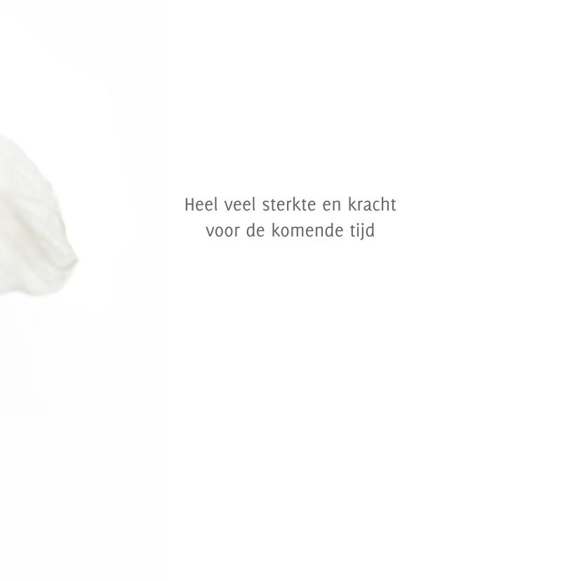 Sterkte met witte bloemen 3