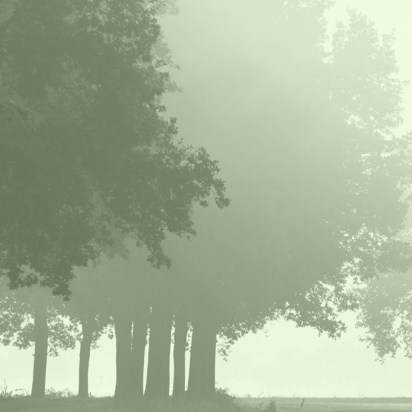 Sterktekaart Hollands landschap 2