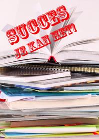 Sterkte kaarten - Sterktekaart Succes met leren