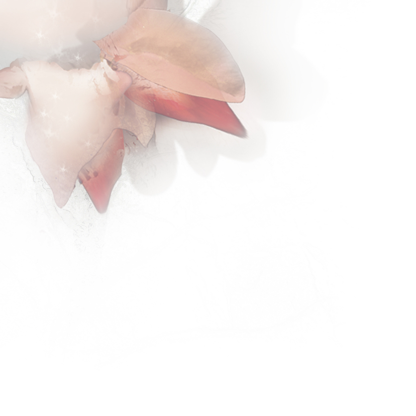 Stijlvolle kerstkaart lora 3 2