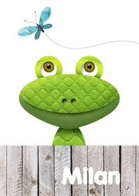 Geboortekaartjes - Stoere kikker met vlinder