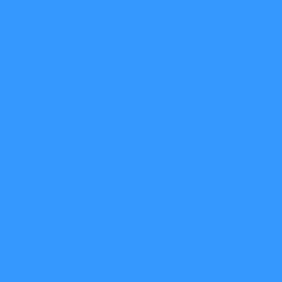 Struisvogel blauw 3