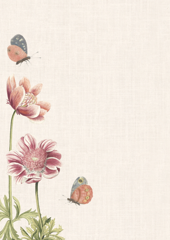 Subtiel geboortekaartje met vintage afbeelding  vlinder 2