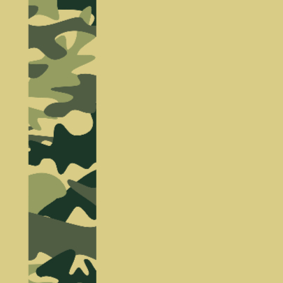 Succeskaart leger camouflage 2