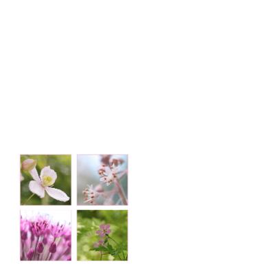 tere paarse bloem rouw bedankkaarten 2