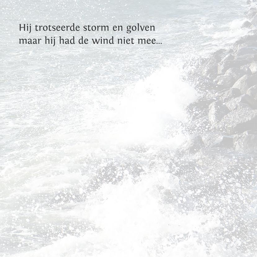Trotseer de storm 2