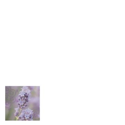 Trouwkaart felicitatie lavendel 2