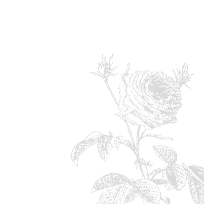 Trouwkaart Pink Rose 3