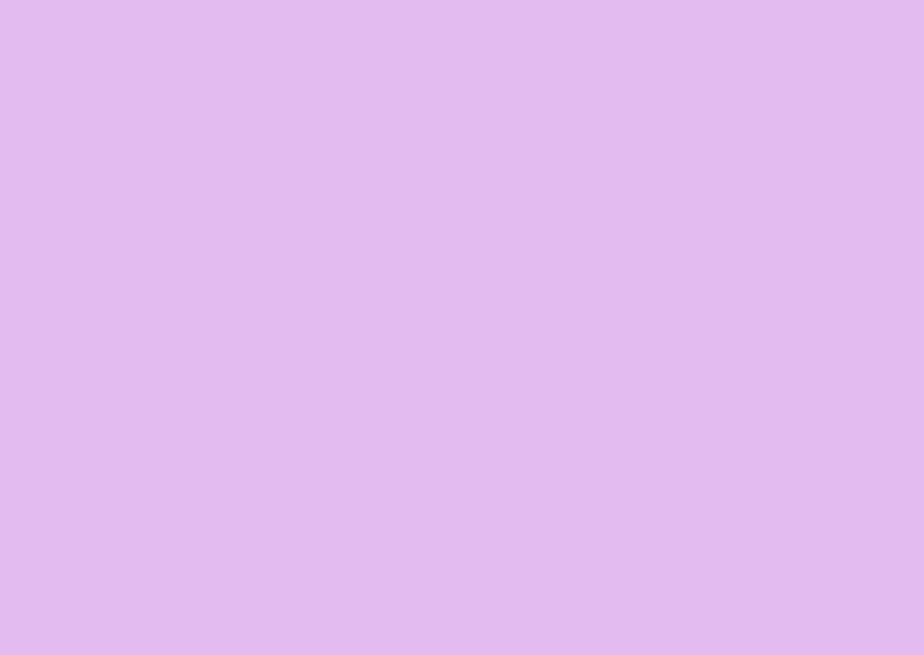 Tulpen in roze en paars 2