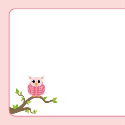 Tweeling geboortekaart Roze uiltjes 2