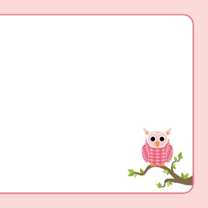 Tweeling geboortekaart Roze uiltjes 3