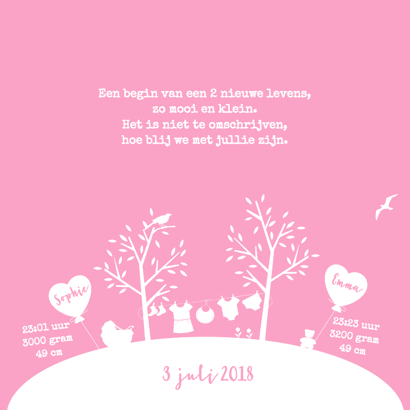 Tweeling Wereld Baby Meisjes 2