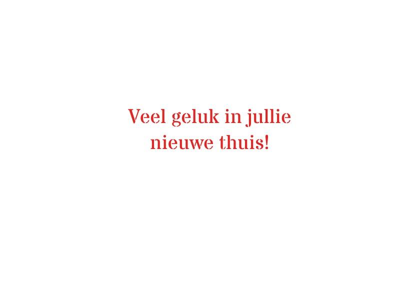 Typisch Hollands - tulpen 2 3