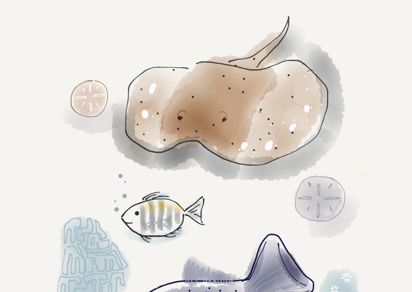 Vakantiekaart fish 2