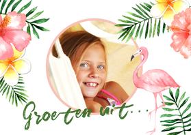 Vakantiekaarten - Vakantiekaart Flamingo- WW