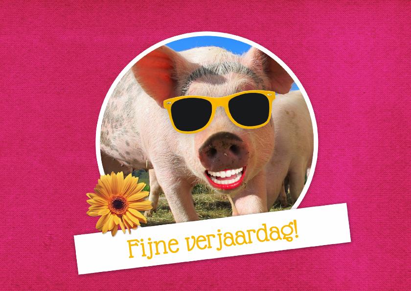 verjaardag vrouw varken