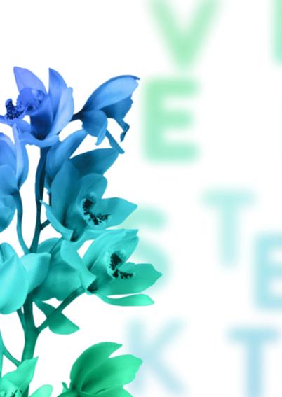 Veel sterkte turquoise pt 2
