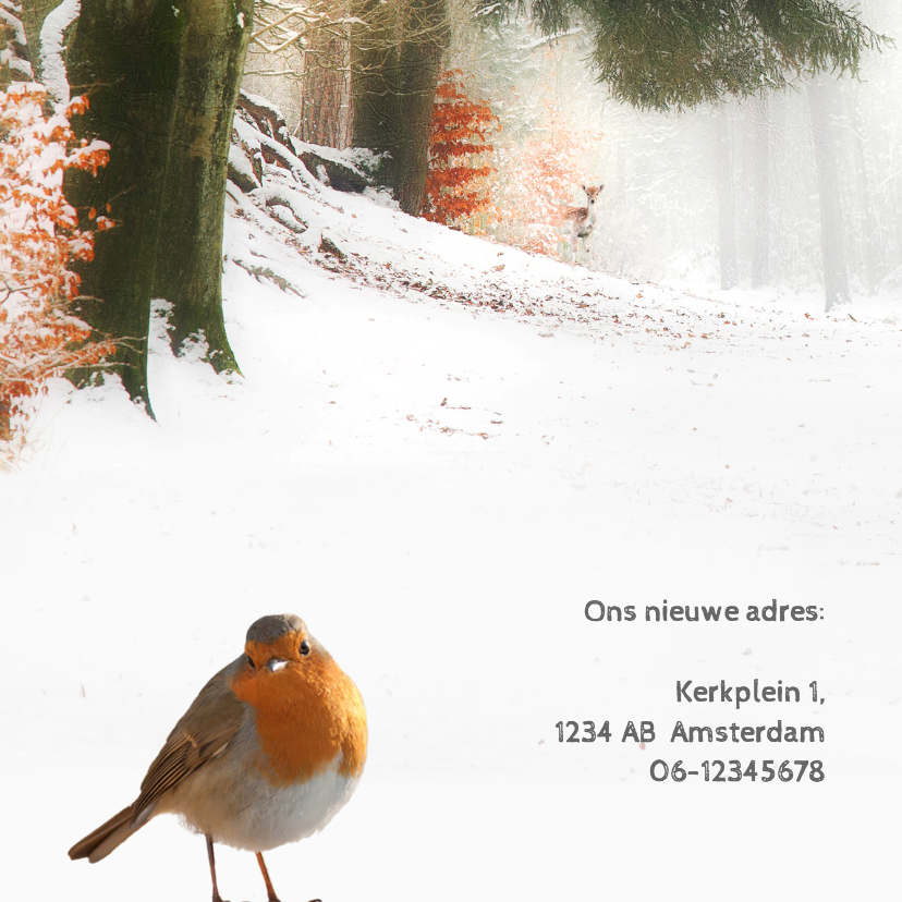 Verhuiskaart winters bos 2