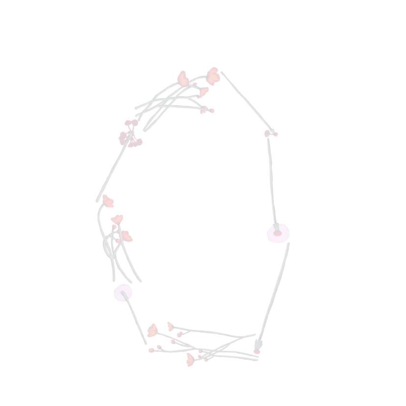verjaardag-happybirthday3-KK 2